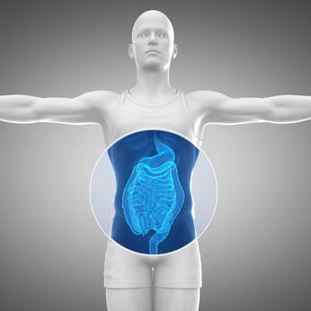 stomach doctor west orange nj